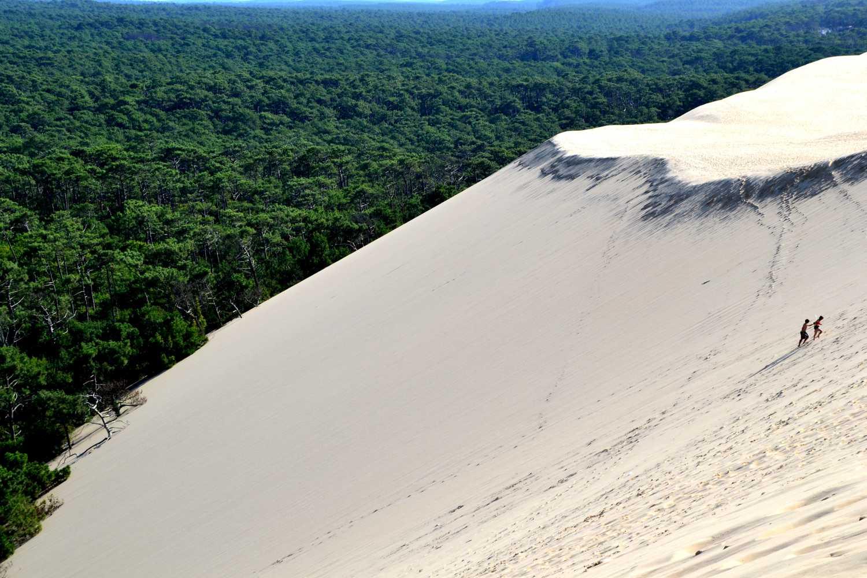 BA Paysages - dune1
